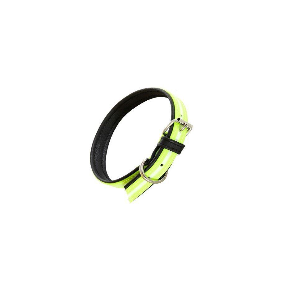 Julius K9 IDC Lumino Halsband, Bild 19