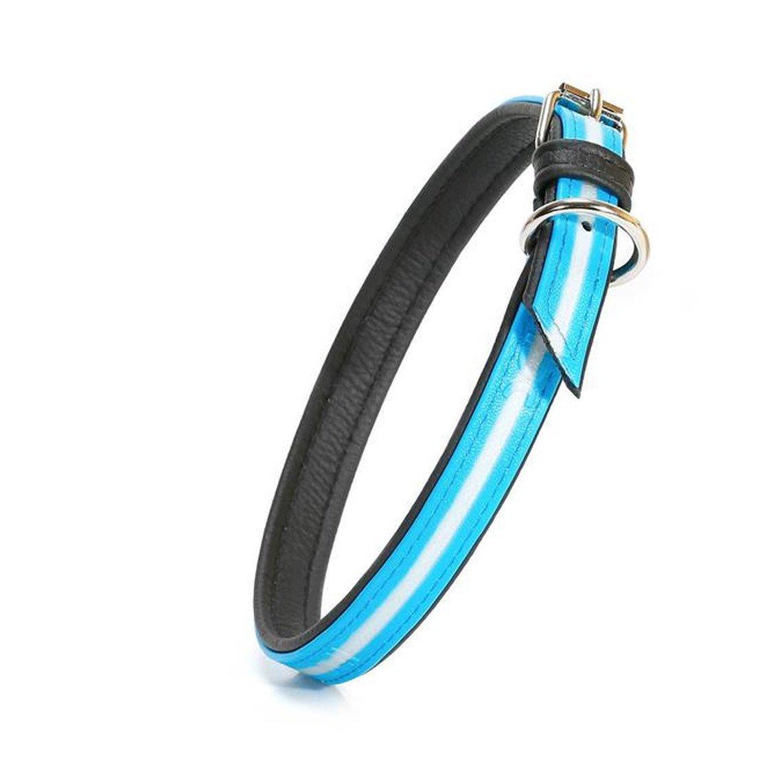 Julius K9 IDC Lumino Halsband, Bild 20