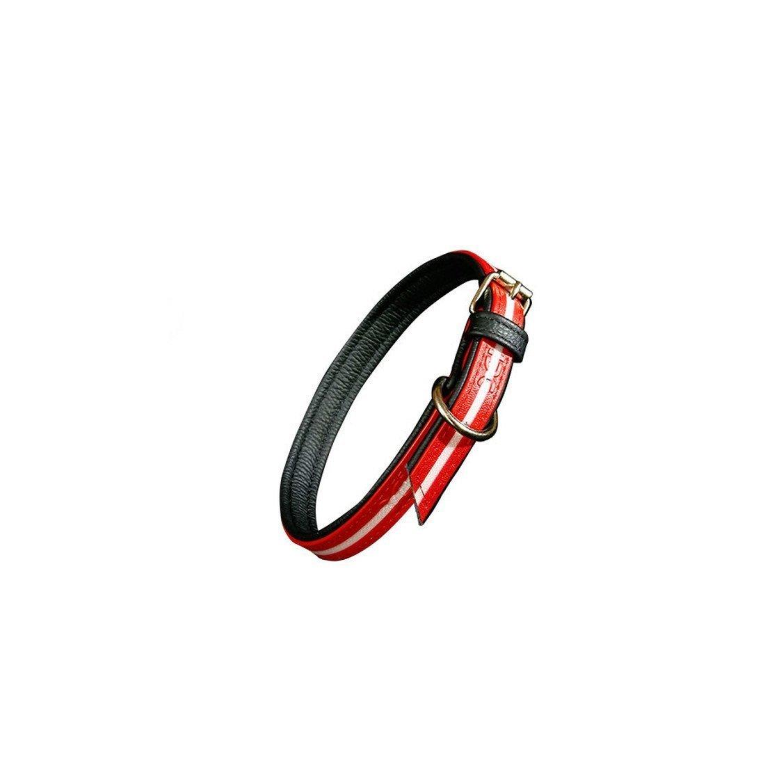 Julius K9 IDC Lumino Halsband, Bild 23