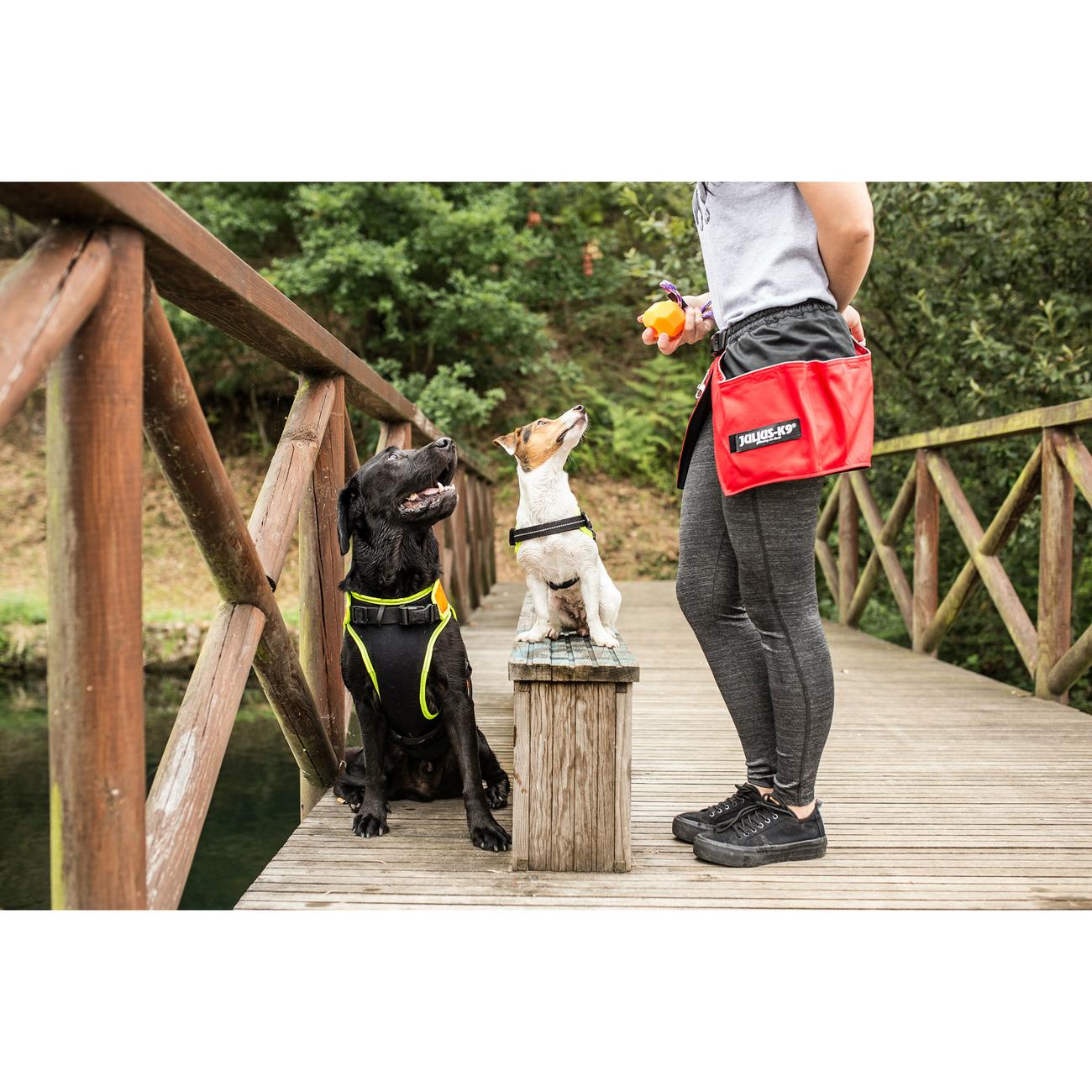 Julius K9 IDC® Multifunktionsweste Neon für Hunde, Bild 11