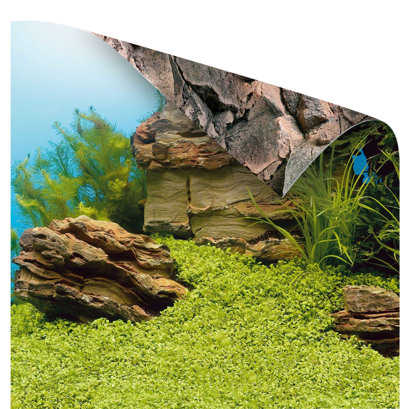 Juwel Aquarium Poster Rückwand, Bild 3