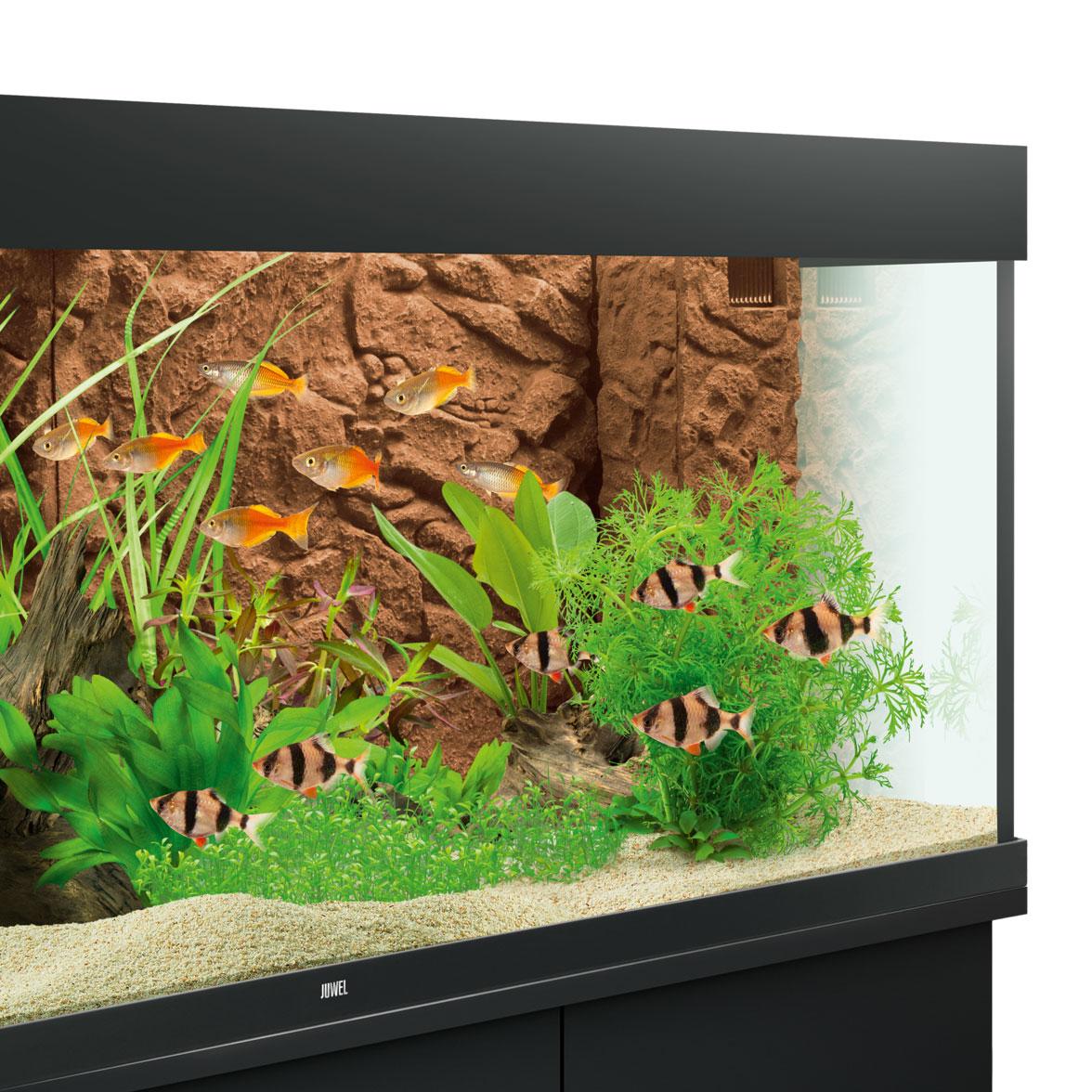 Juwel Aquarium Rückwand 3d, Bild 14