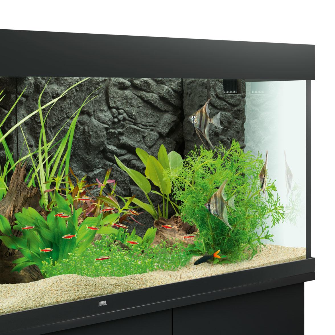 Juwel Aquarium Rückwand 3d, Bild 18