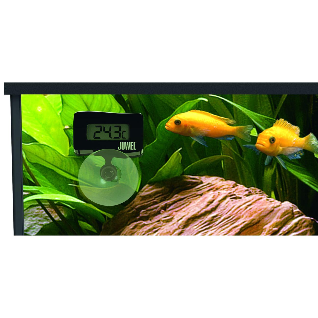 Juwel Digitalthermometer 2.0 für Aquarien, Bild 3