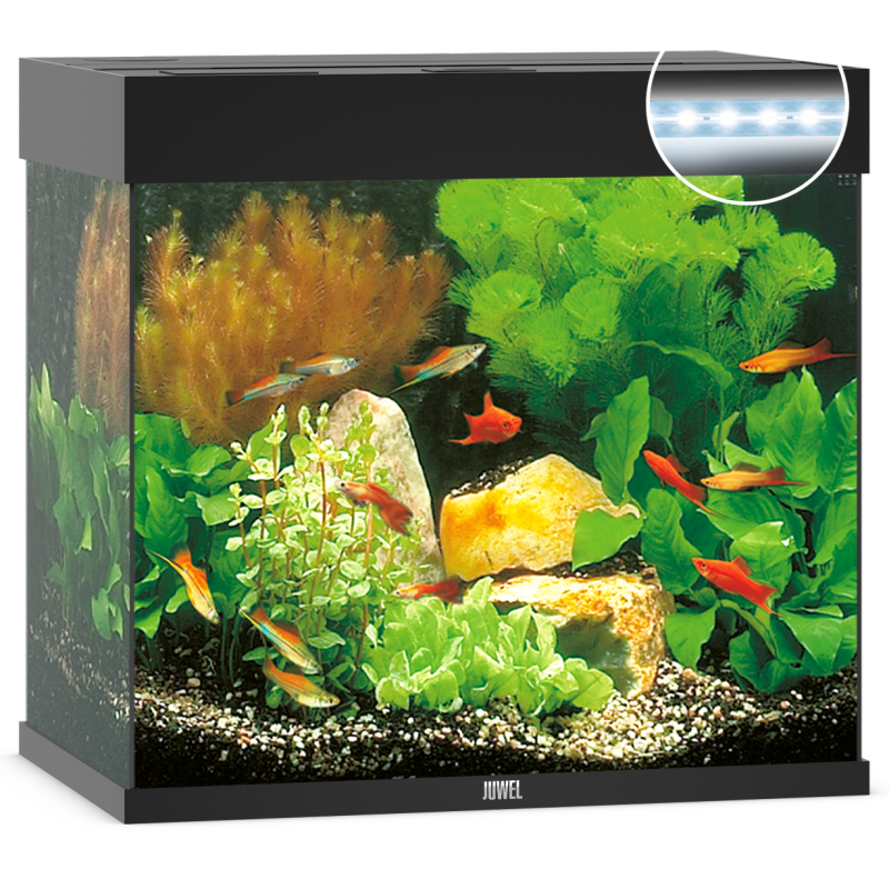 Juwel Lido 120 LED Aquarium