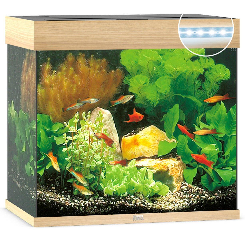 Juwel Lido 120 LED Aquarium, Bild 4
