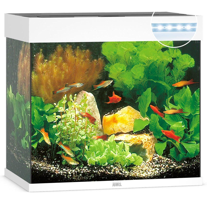 Juwel Lido 120 LED Aquarium, Bild 2