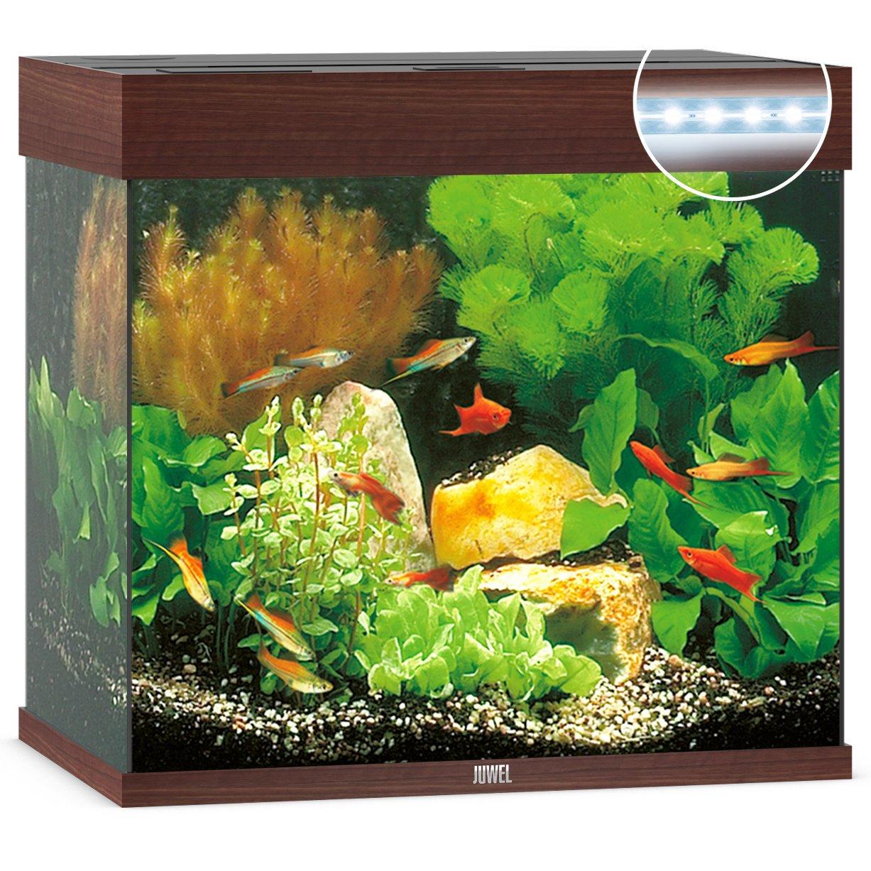 Juwel Lido 120 LED Aquarium, Bild 3