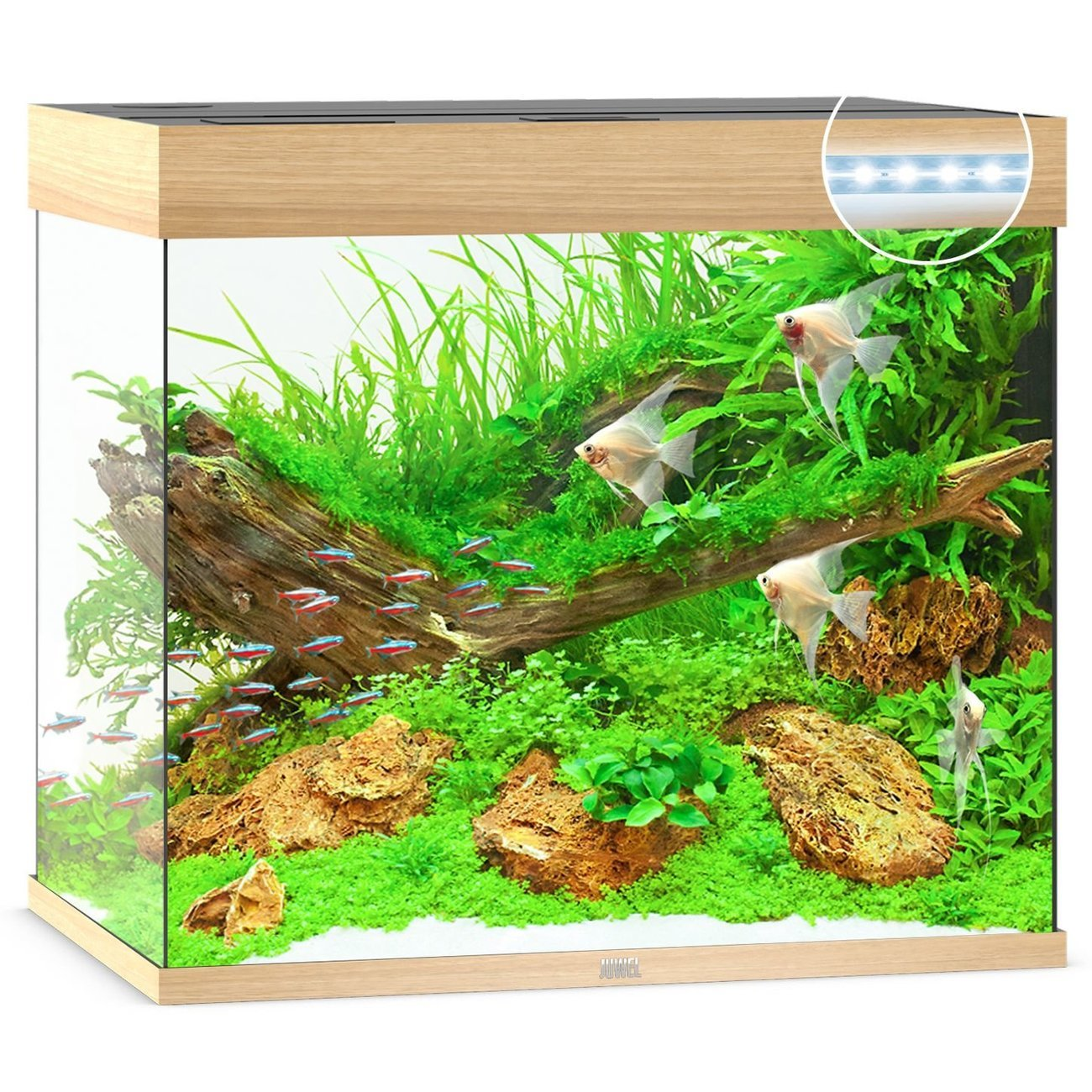 JUWEL Lido 200 LED Aquarium, 200 Liter, beige