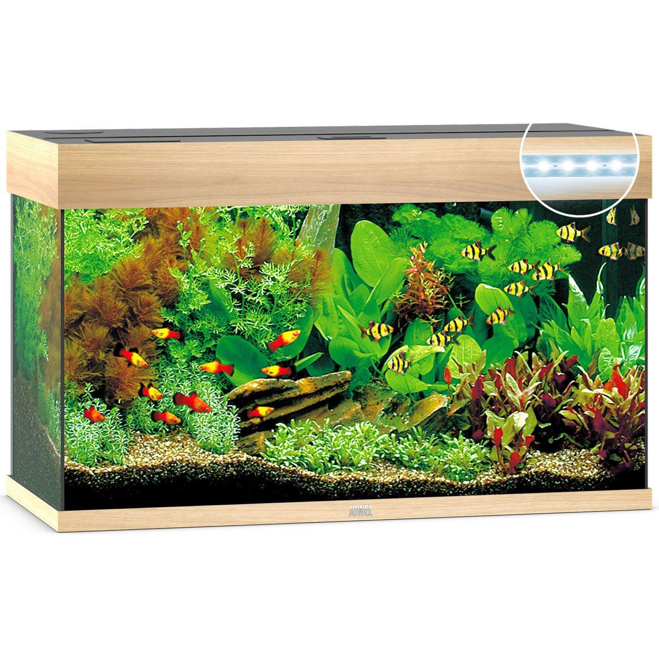 Juwel Rio 125 LED Aquarium, Bild 3