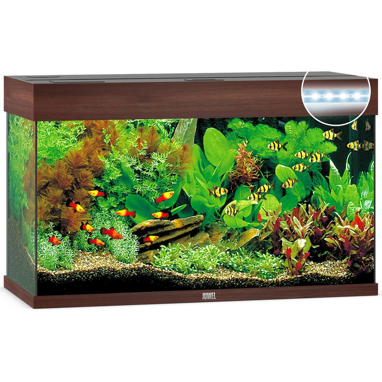 Juwel Rio 125 LED Aquarium, Bild 2