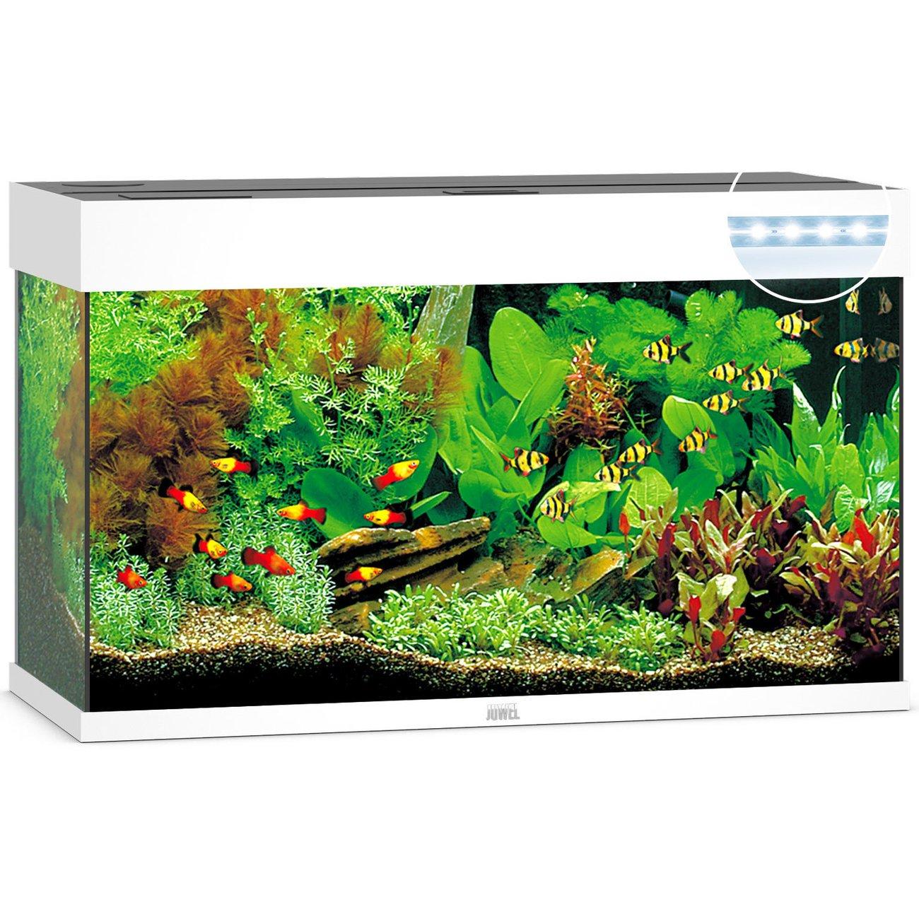 Juwel Rio 125 LED Aquarium, Bild 4