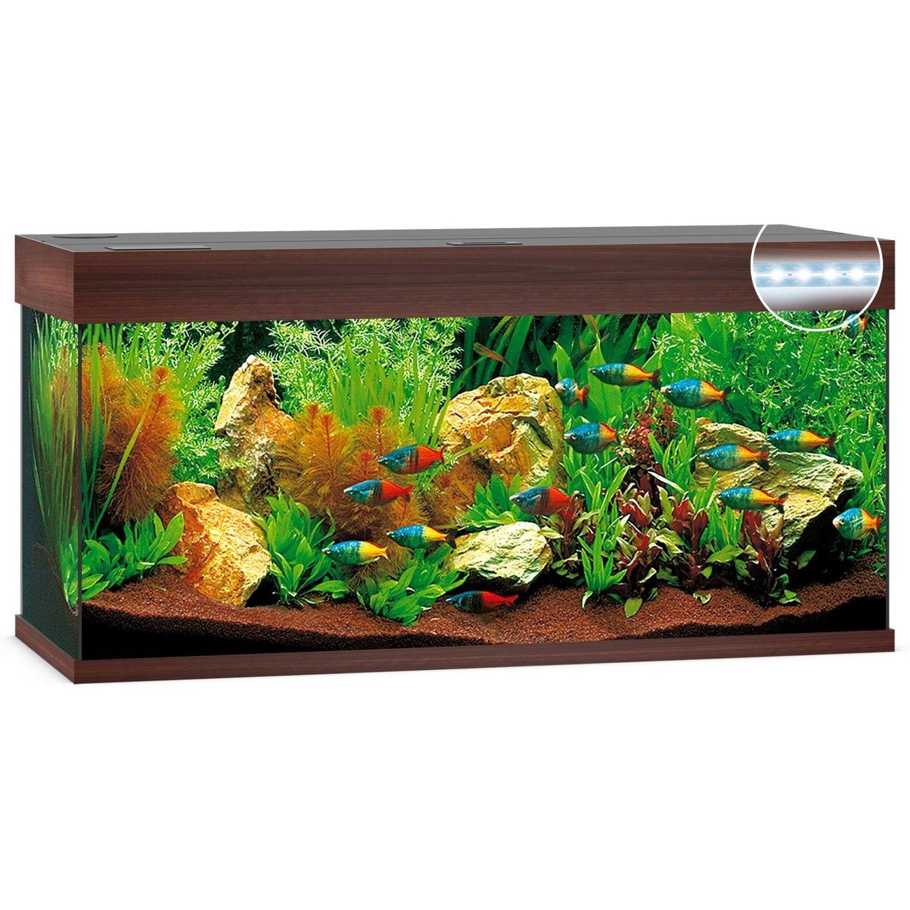 Juwel Rio 180 LED Aquarium, Bild 2