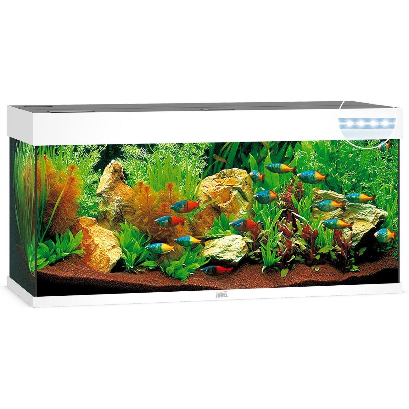 JUWEL Rio 180 LED Aquarium, 180 Liter, weiß