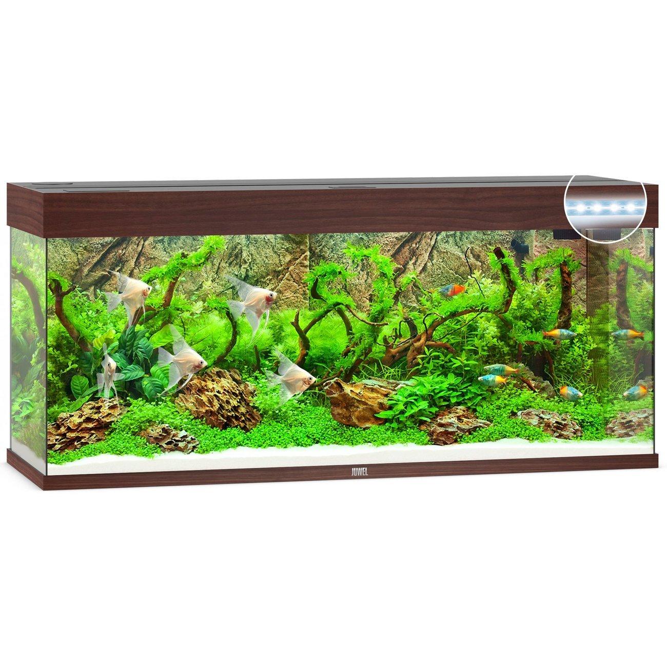 Juwel Rio 240 LED Aquarium, Bild 2