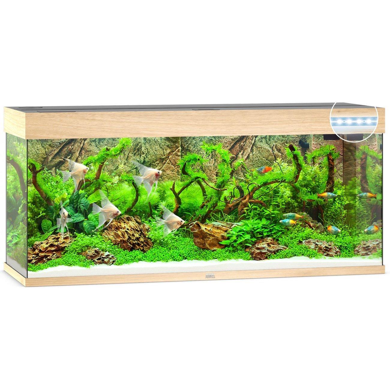 Juwel Rio 240 LED Aquarium, Bild 3