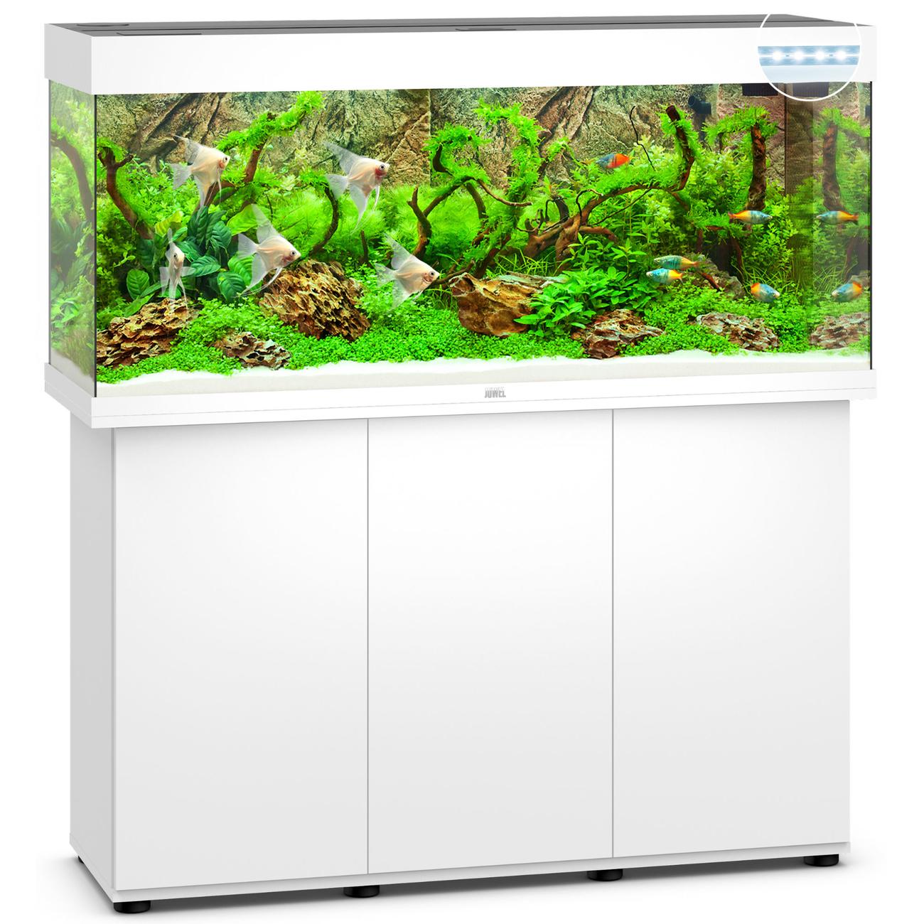 Juwel Rio 240 LED Aquarium mit Unterschrank, Bild 9