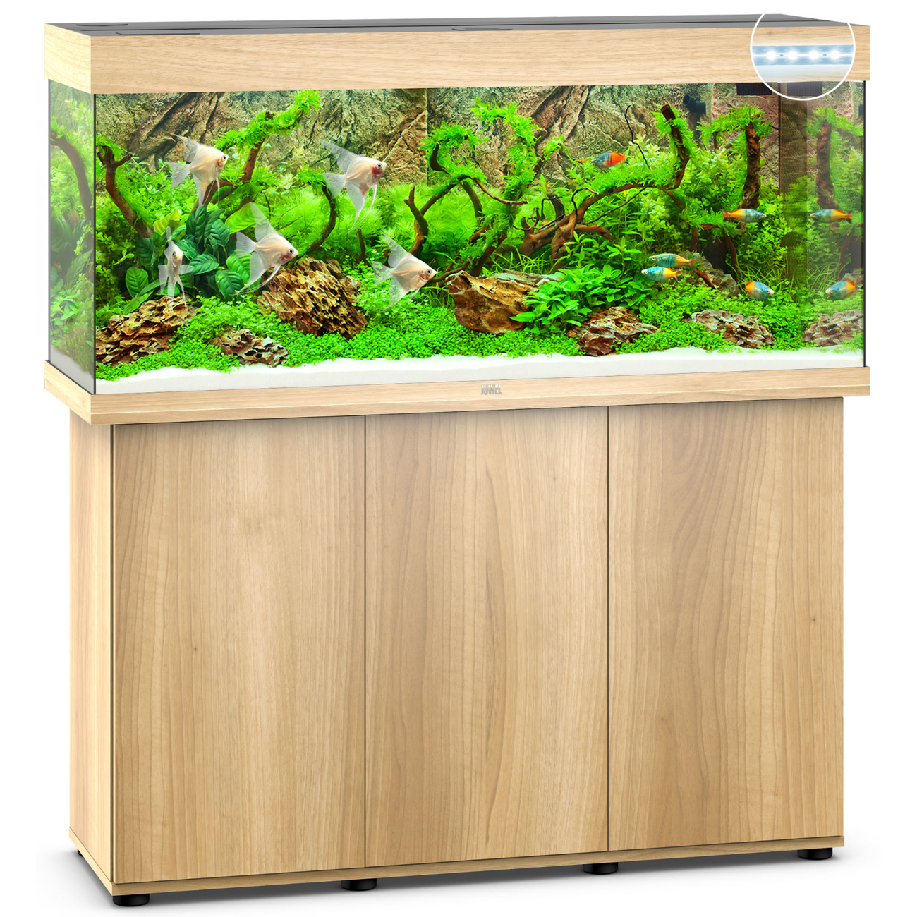 Juwel Rio 240 LED Aquarium mit Unterschrank, Bild 17