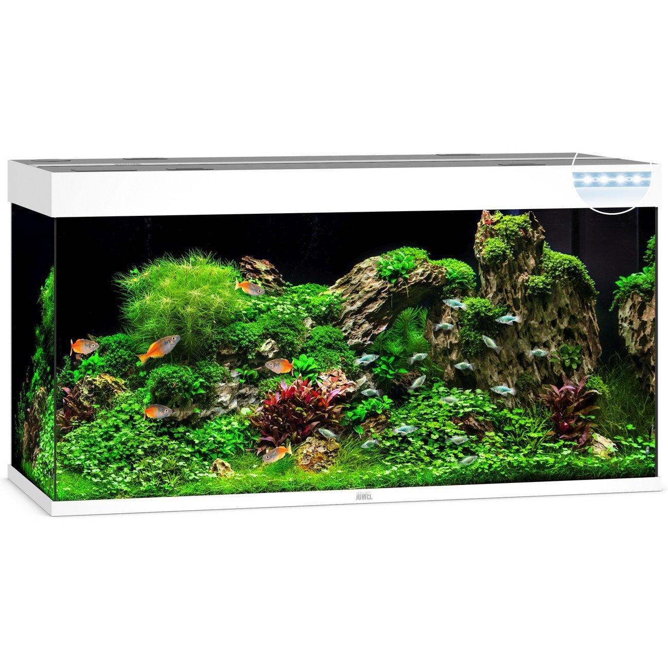 JUWEL Rio 350 LED Aquarium, 350 Liter, weiß