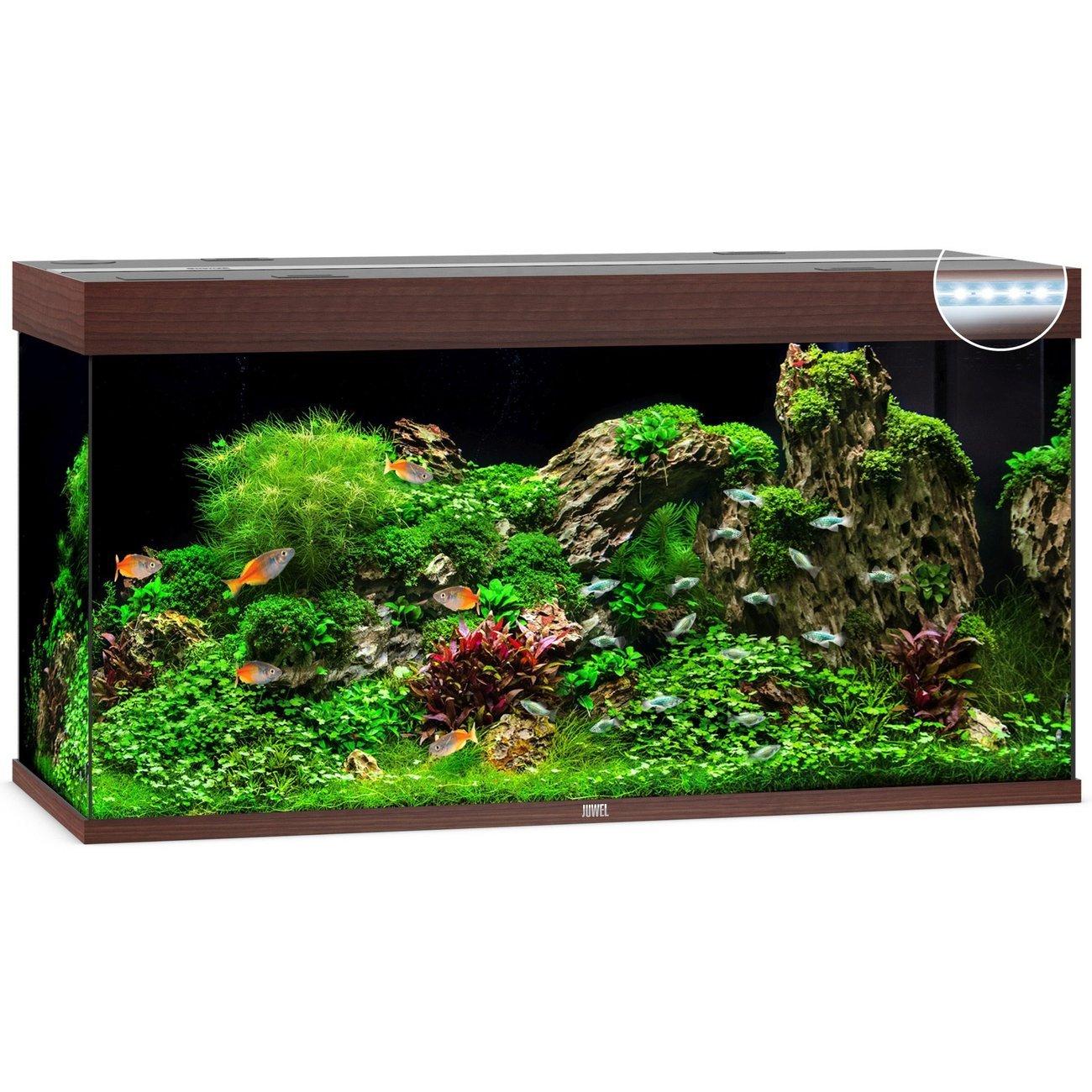 Juwel Rio 350 LED Aquarium, Bild 2