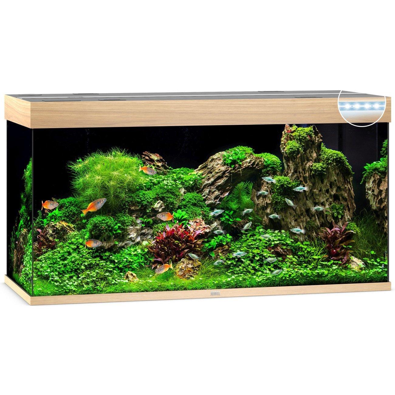 Juwel Rio 350 LED Aquarium, Bild 3