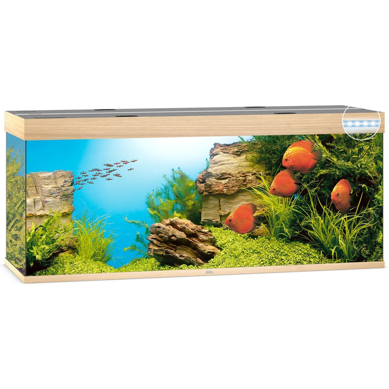 JUWEL Rio 450 LED Aquarium, 450 Liter, beige