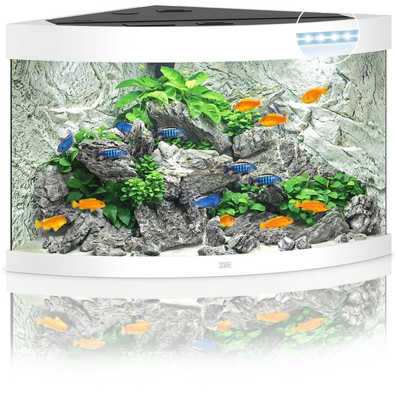 JUWEL Trigon 190 LED Aquarium, 190 Liter, weiß