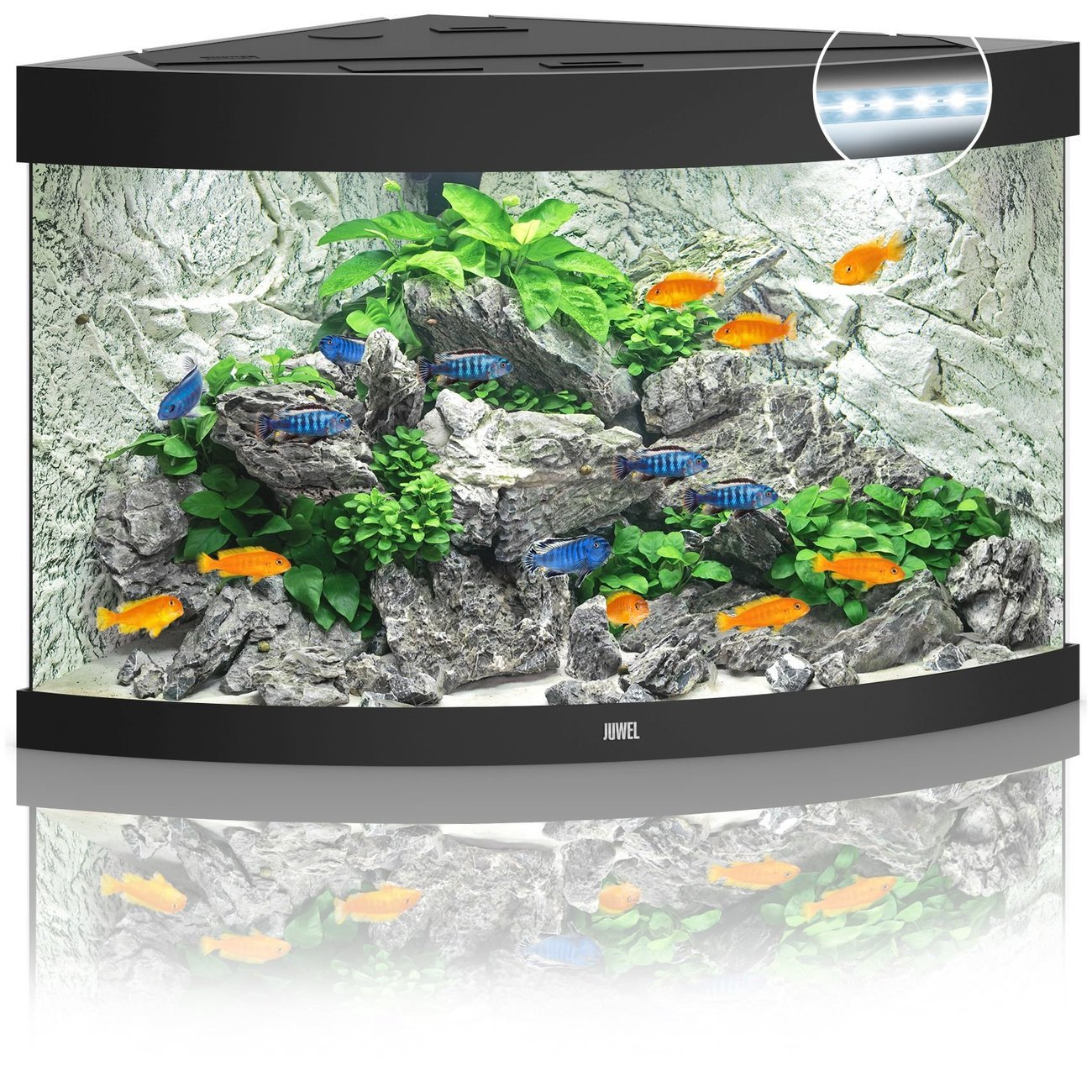 JUWEL Trigon 190 LED Aquarium, 190 Liter, schwarz