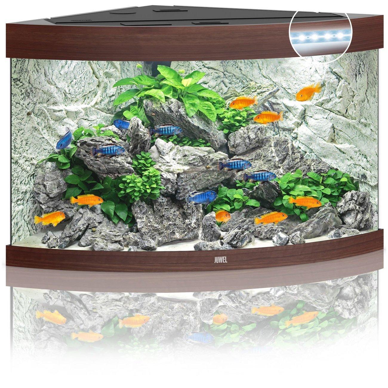 JUWEL Trigon 190 LED Aquarium, 190 Liter, dunkelbraun