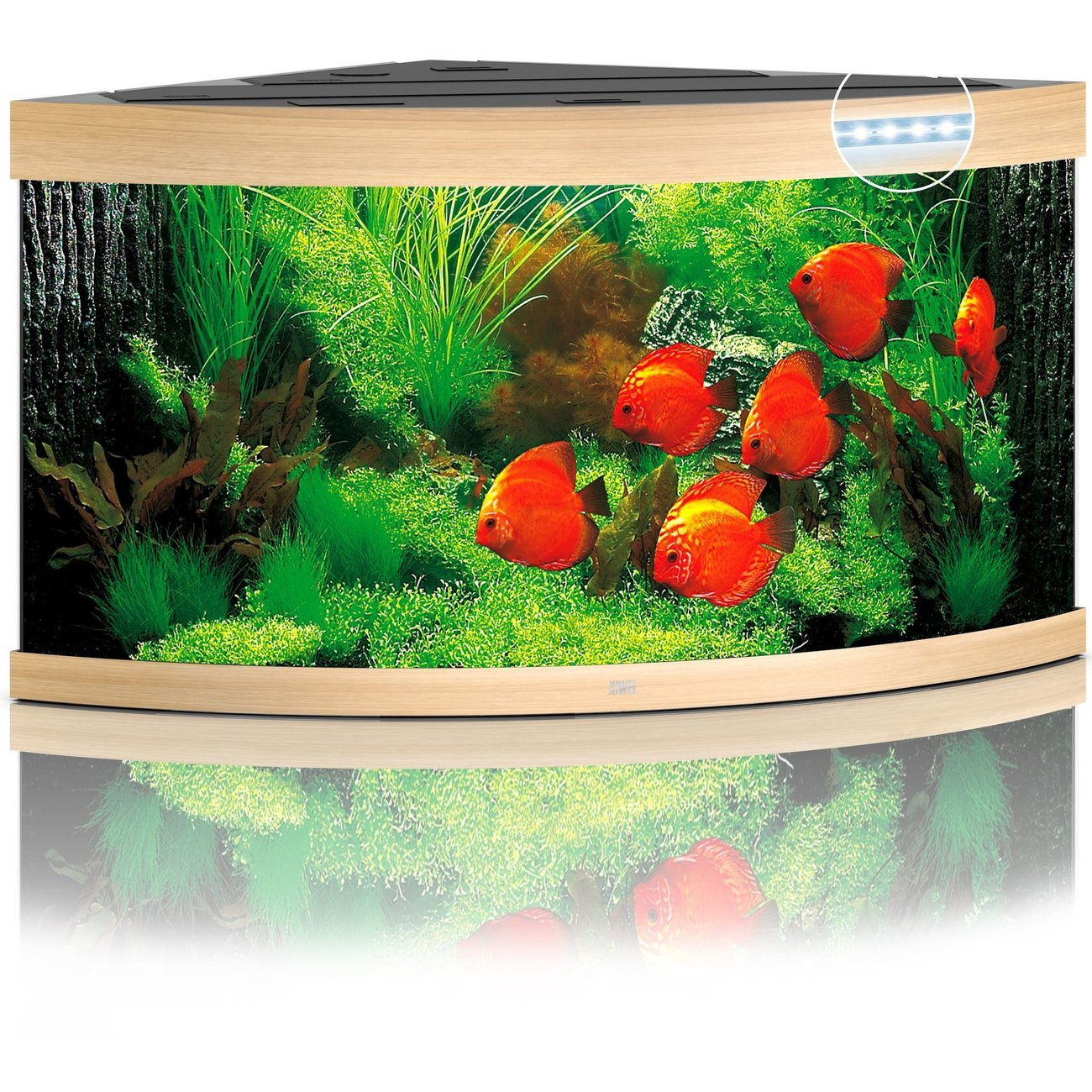 Juwel Trigon 350 LED Aquarium, Bild 3
