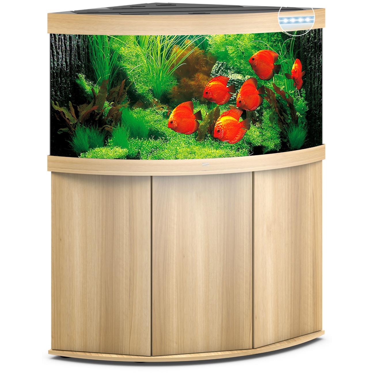 JUWEL Trigon 350 LED Eck-Aquarium mit Unterschrank, 350 Liter, helles Holz