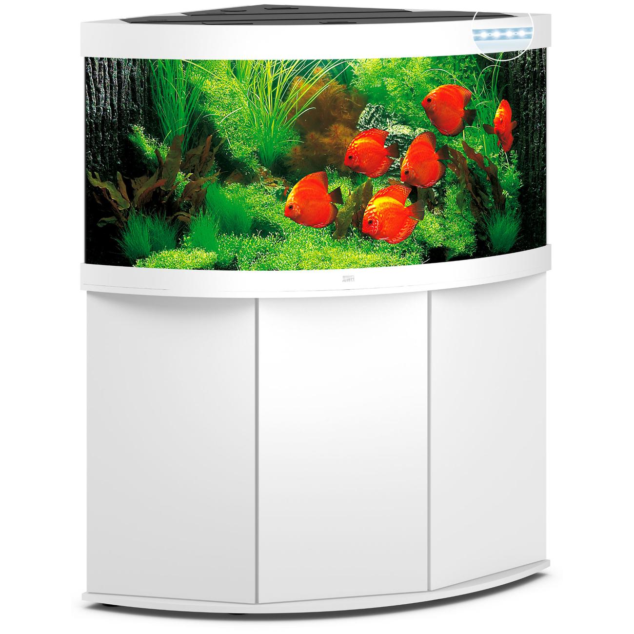 Juwel Trigon 350 LED Eck-Aquarium mit Unterschrank, Bild 7