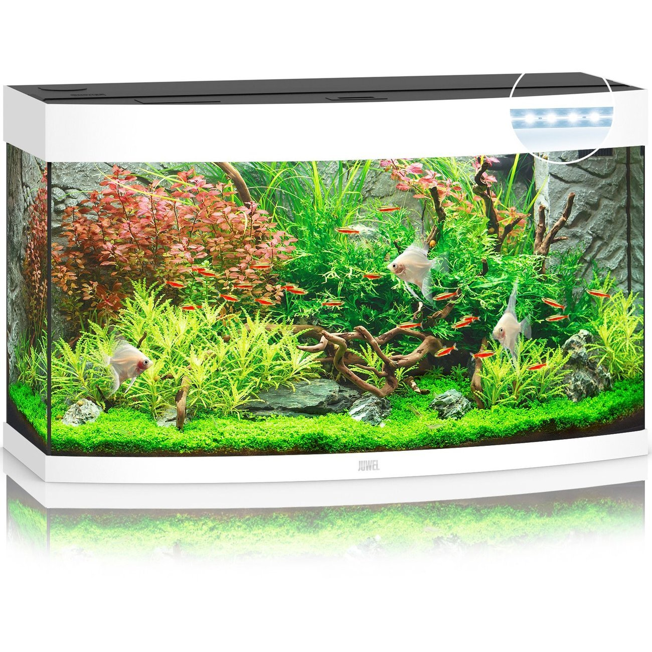 JUWEL Vision 180 LED Aquarium, 180 Liter, weiß