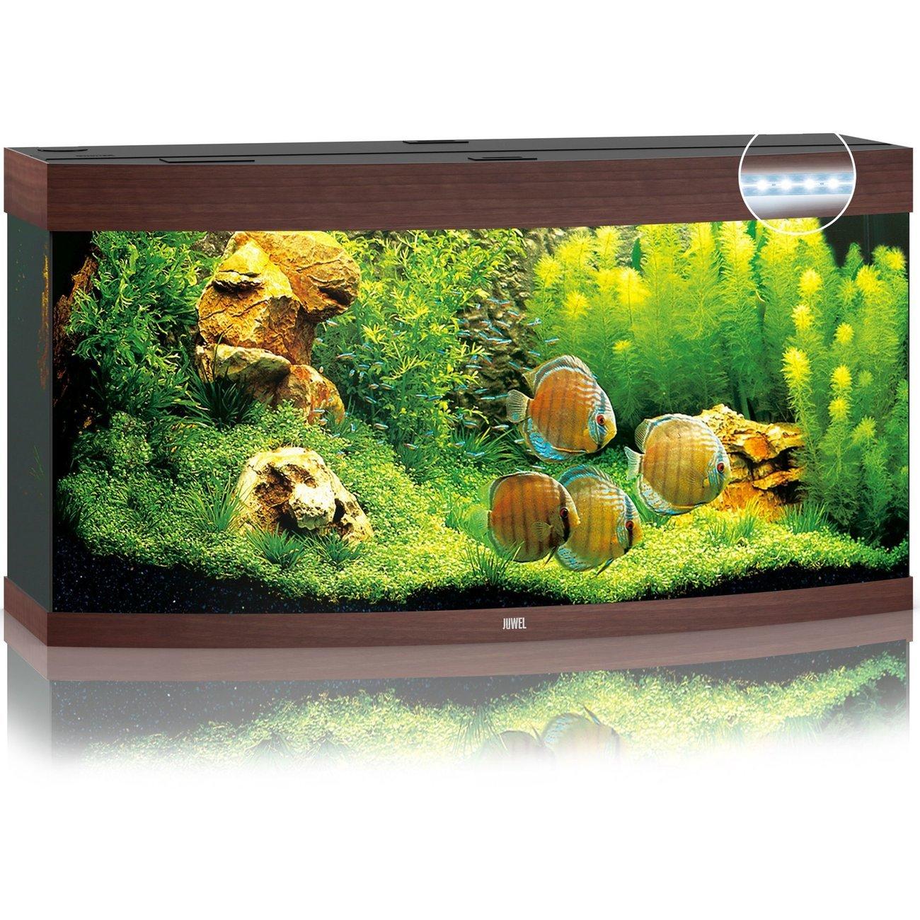 Juwel Vision 260 LED Aquarium, Bild 2
