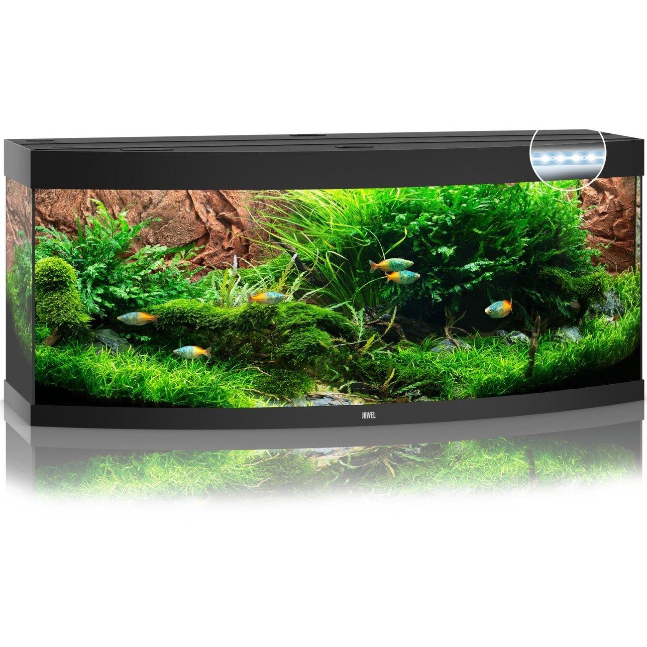 Juwel Vision 450 LED Aquarium