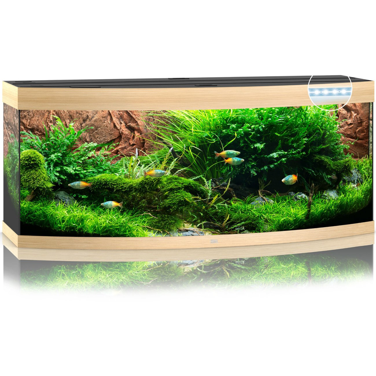 Juwel Vision 450 LED Aquarium, Bild 4