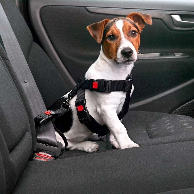 Karlie Autosicherheitsgeschirr, Bild 2