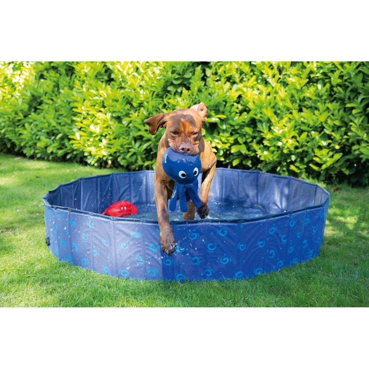 Karlie Doggy Pool, Bild 9