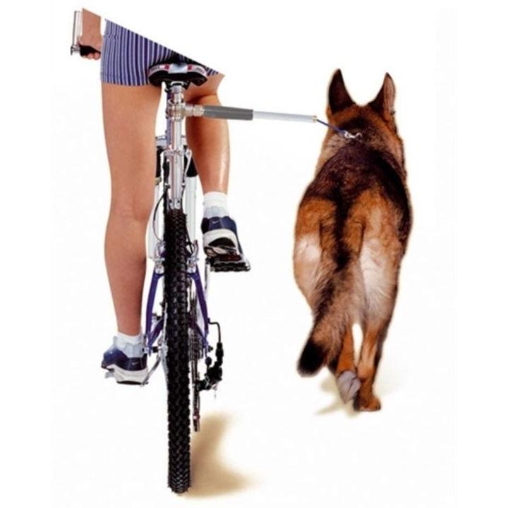 Walky Dog Karlie Fahrradhalter Fahrradleine für Hunde, Bild 2