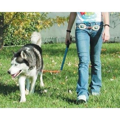 Walky Dog Karlie Fahrradhalter Fahrradleine für Hunde, Bild 3