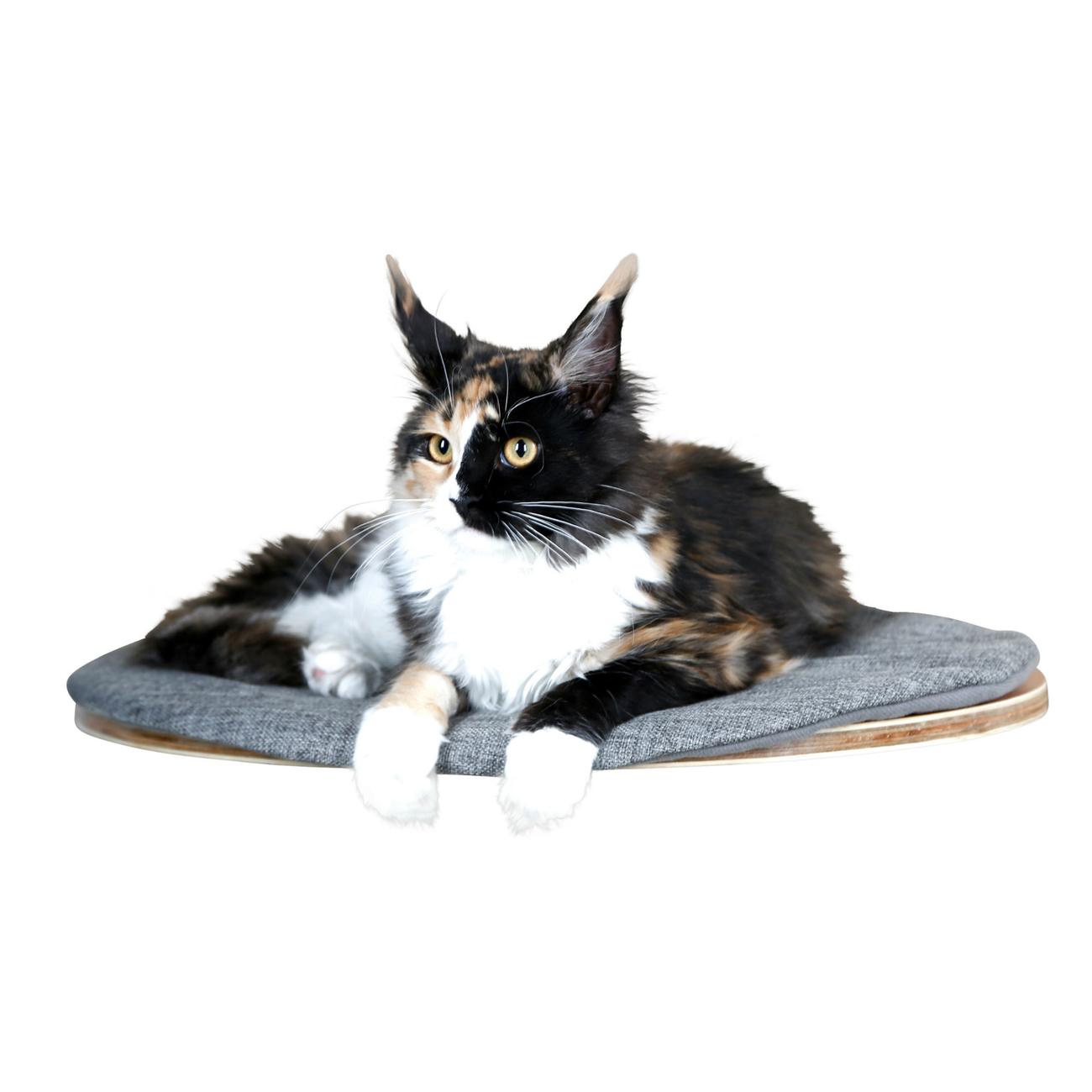 Kerbl Katzen Wandliegebrett Tofana oval