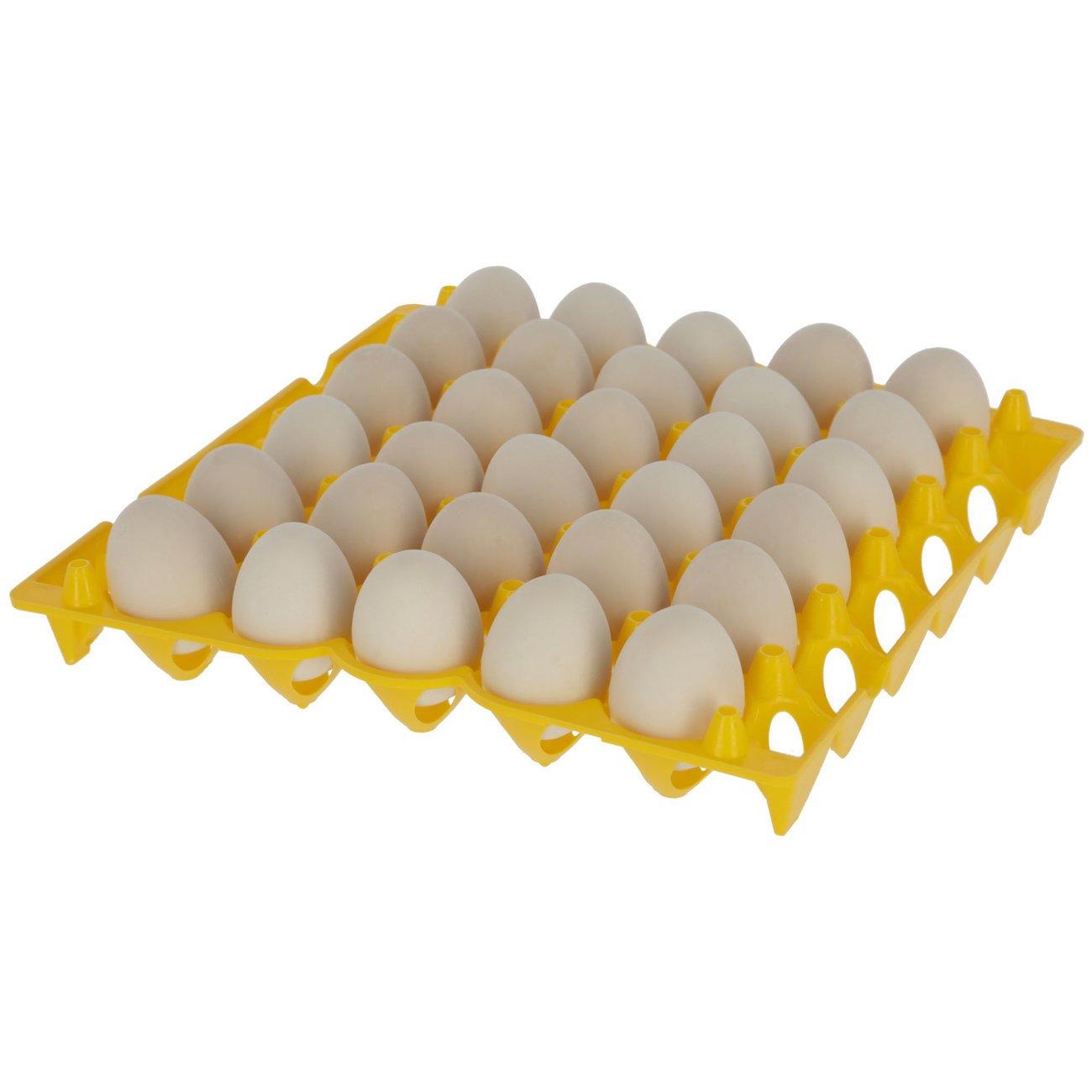 Eieraufbewahrung Bild 2