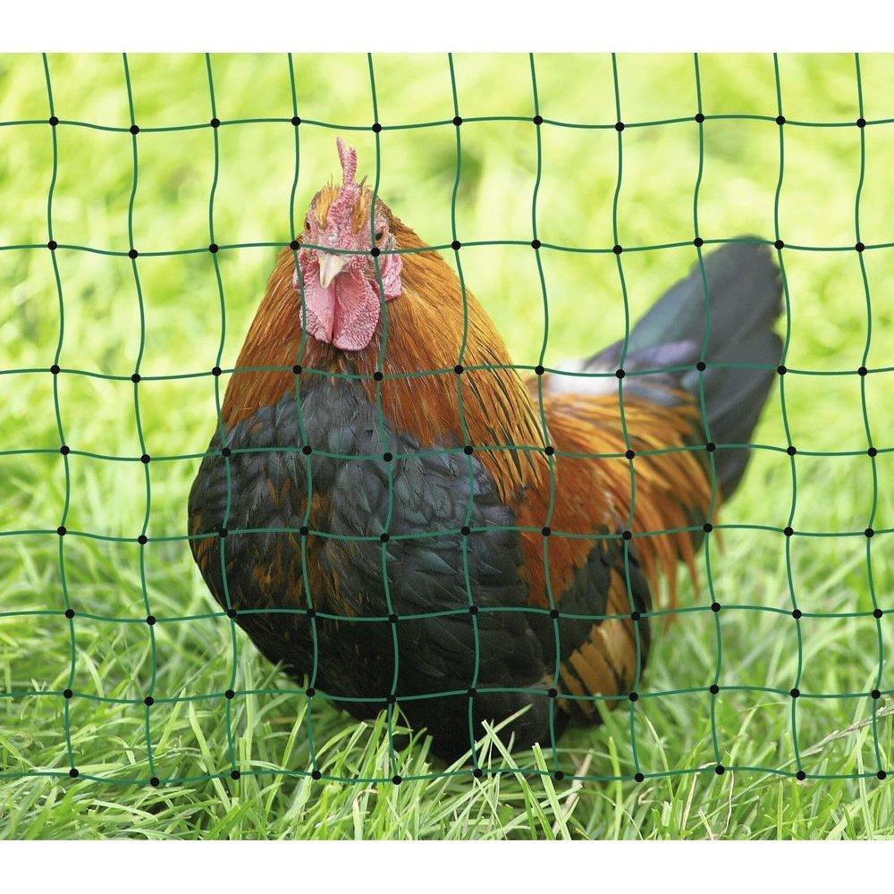 Geflügelnetz PoultryNet Bild 8