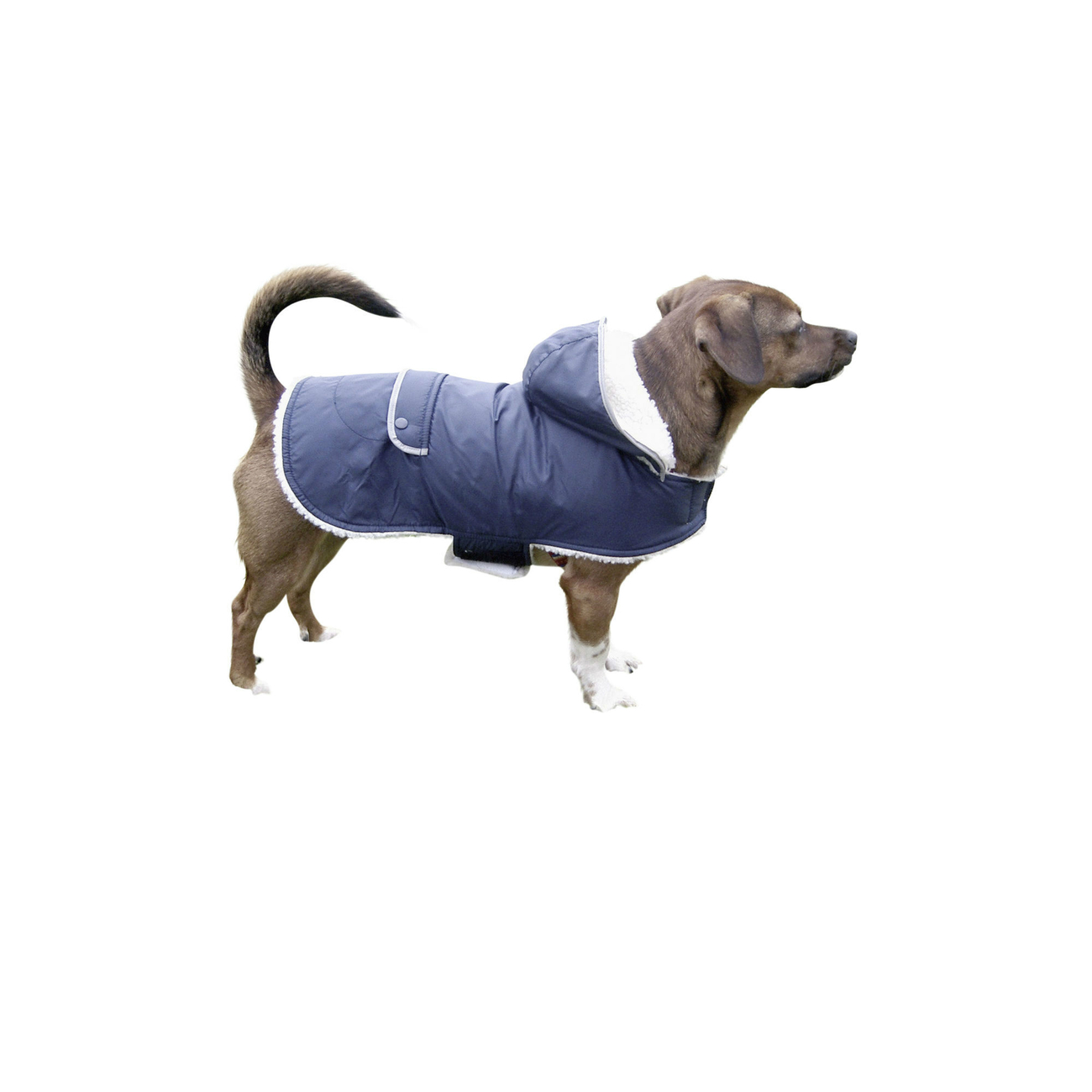 Kerbl Hundemantel TEDDY, Bild 3