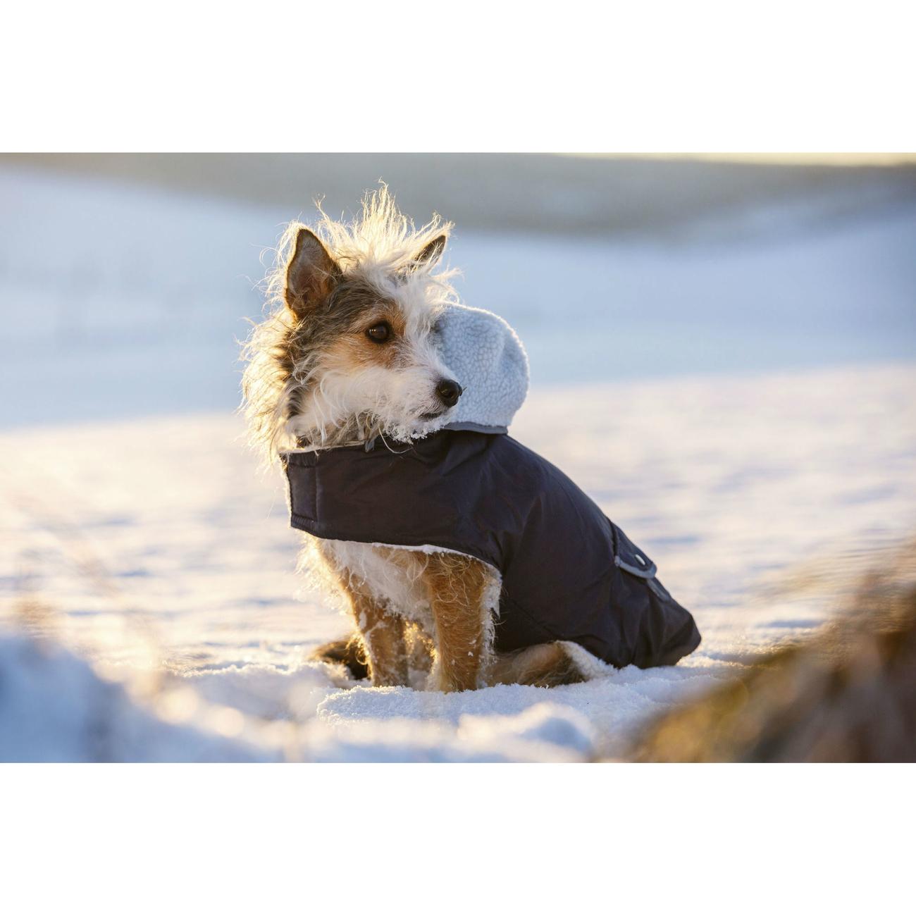 Kerbl Hundemantel TEDDY, Bild 2