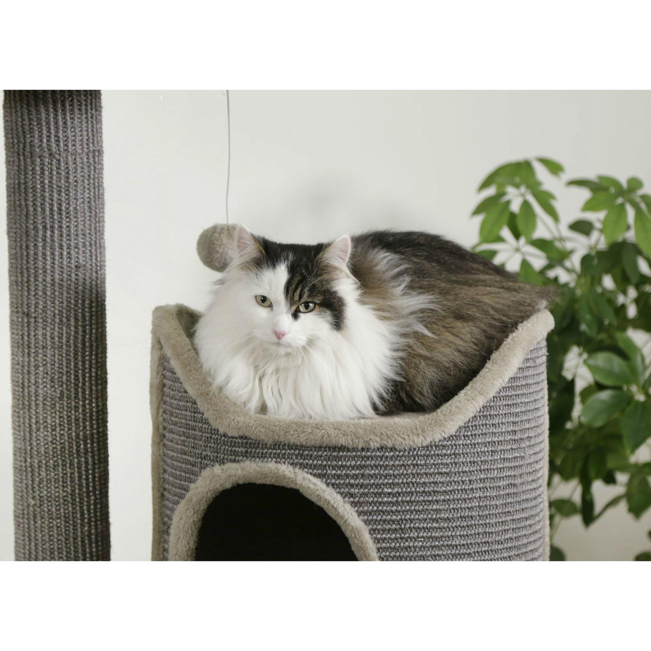 Kerbl Kratztonne für Katzen Tiana grau, Bild 4