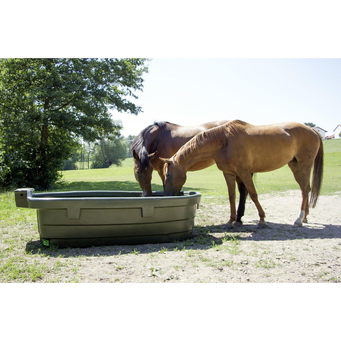 Kerbl Weidetränke für Pferde, Bild 2