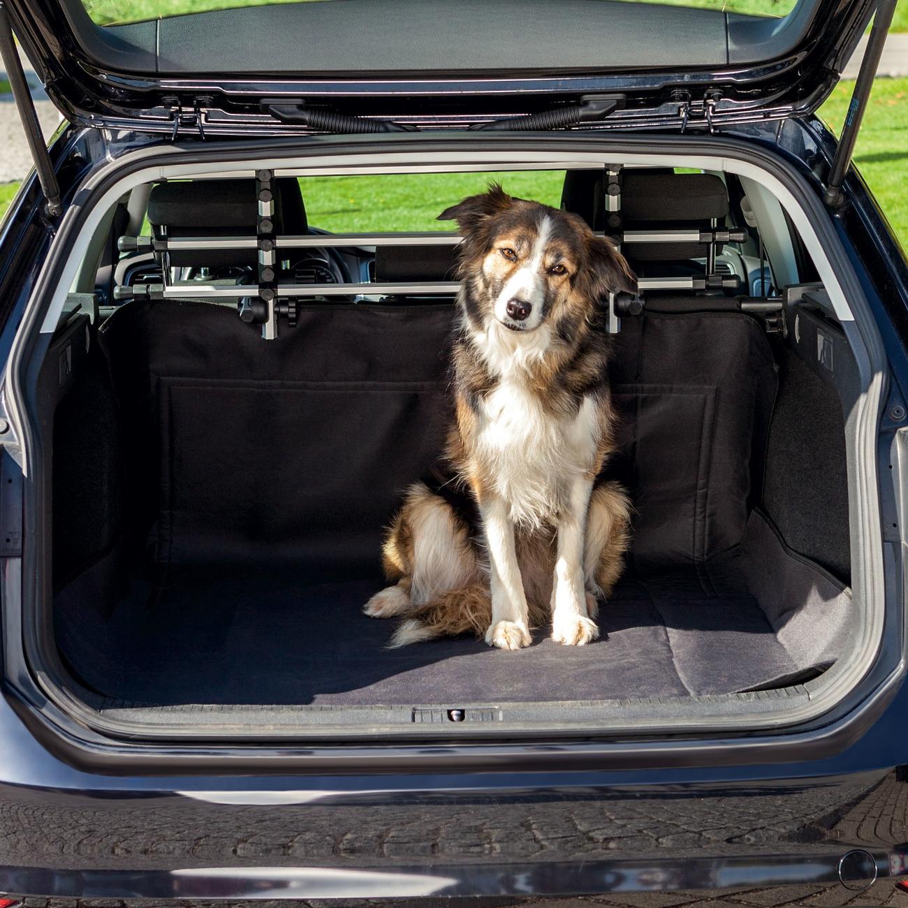 Trixie Kofferraum Auto Decke für Hunde, 1,20 x 1,50 m, schwarz
