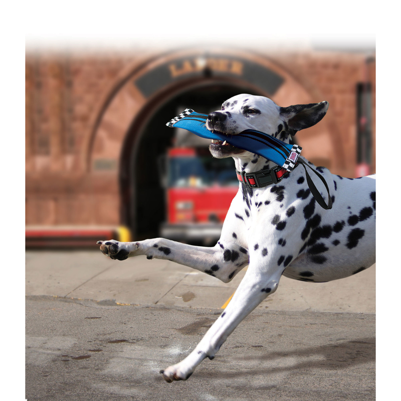 KONG Ballistic Firehose Feuerwehrschlauch Hundespielzeug, Bild 8