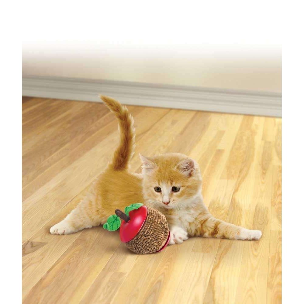 KONG Cat Scratch Apple, Bild 2
